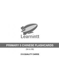 Chinese Vocabulary Flashcards PRIMARY 5