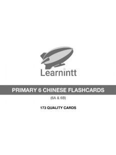Chinese Vocabulary Flashcards PRIMARY 6