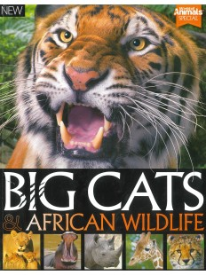 Big Cats and African WildLife
