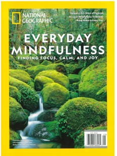 Everyday Mindfulness finding focus , calm and joy